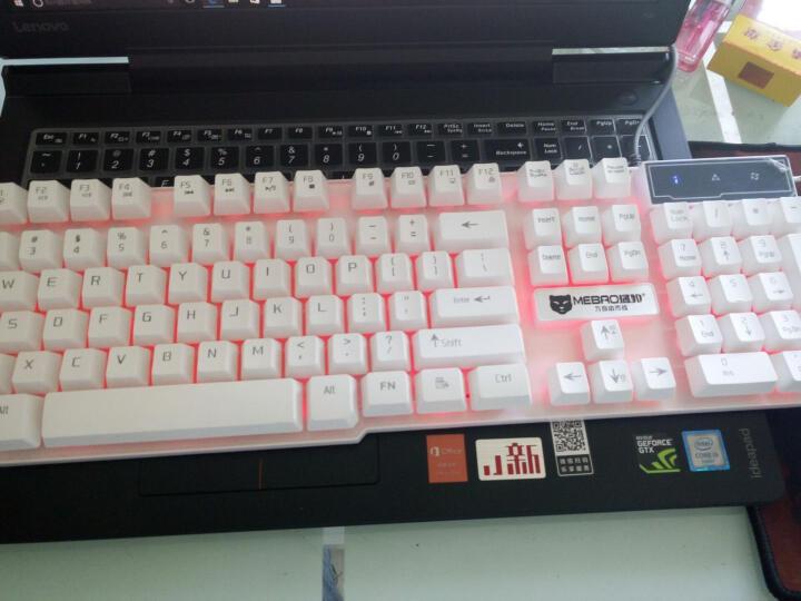 前行者游戏背光发光牧马人机械手感键盘鼠标套装lol键鼠家用有线办公网吧外设电脑笔记本USB外接键盘 GX50黑色彩虹背光单键盘 晒单图