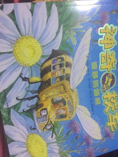 神奇校车第一辑(全套11册)神奇的校车全套 神奇校车在人体中游览系列童书  晒单图