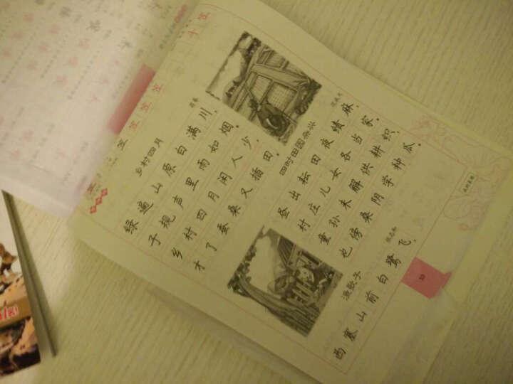 2017春四年级下墨点字帖英语同步写字(人教PEP 新目标)楷书 晒单图
