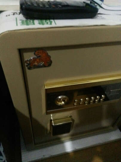 2700 虎牌爱尚45电子密码咖啡色 晒单图
