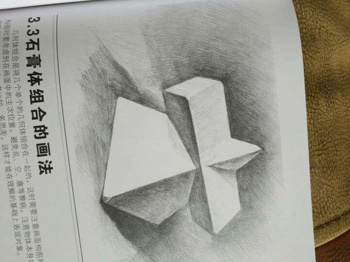 包邮赠古筝课件零基础学视频自学书林教学美术玲教程素描电子琶音图片