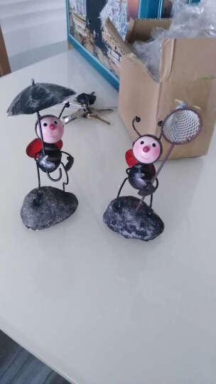 翻旧事 铁皮蚂蚁田园可爱小饰品玄关摆设创意家居装饰品摆件手工制品精美礼品 瓢虫拿水壶 0 晒单图