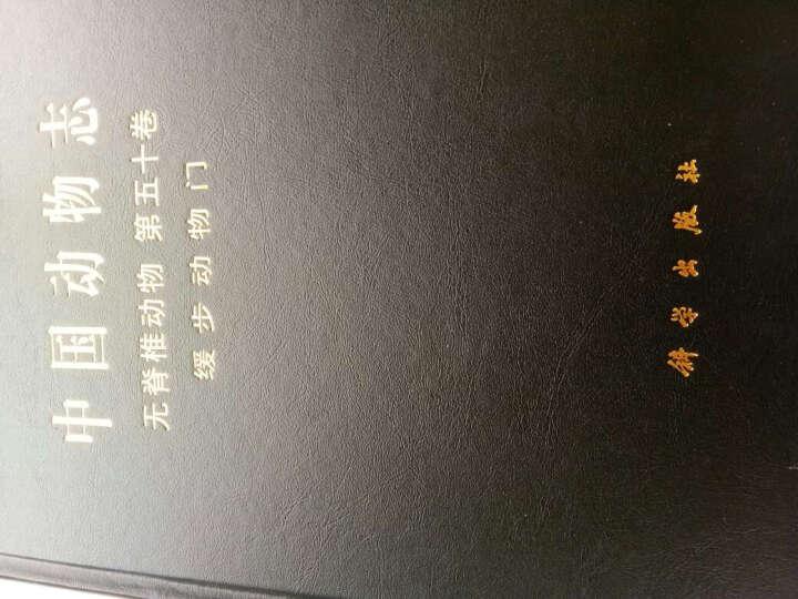 中国动物志 无脊椎动物 第五十卷 缓步动物门 晒单图