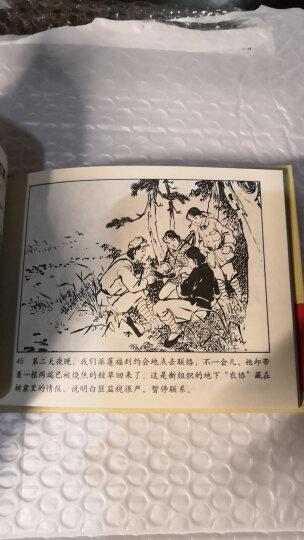革命战斗故事丛书:红色女儿兵 晒单图