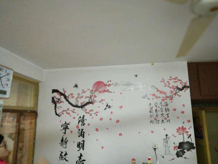 墙贴客厅卧室书法创意