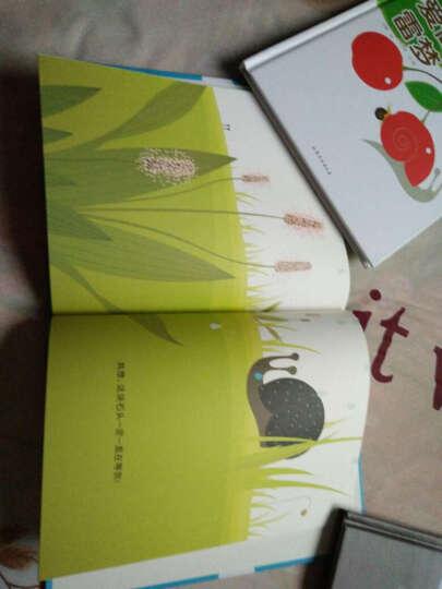 自然科学童话绘本(套装共5册) 晒单图