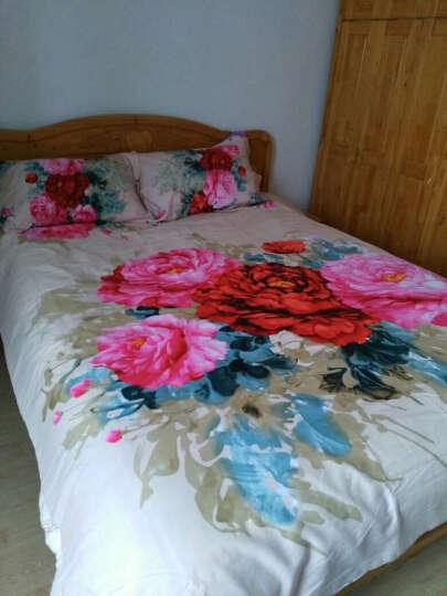 如烟家居 全棉磨毛婚庆四件套 纯棉加厚保暖大红结婚床上用品套件 精致生活-Y 1.5/1.8m床适用 200*230被套 晒单图