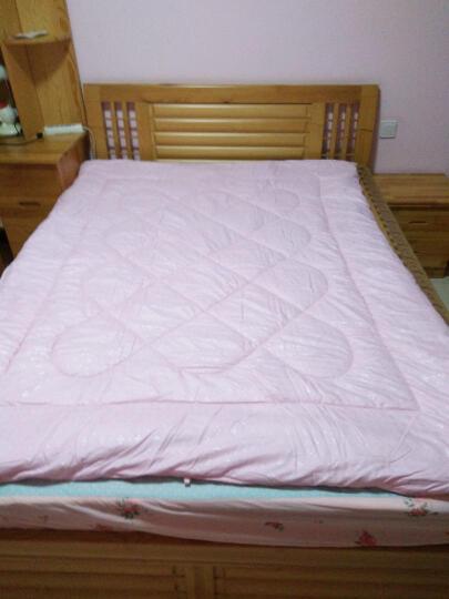伊乐儿家纺 床上用品 超柔印花小提花 夏被 空调被 被子 驼色 150*200cm/4斤 晒单图
