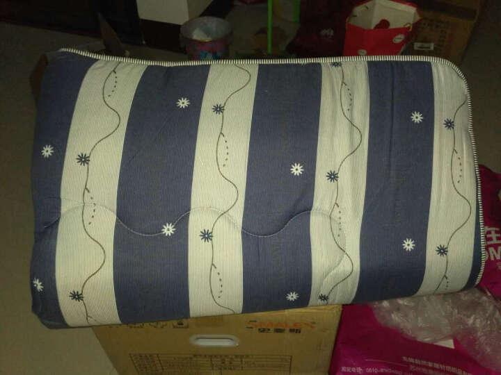 雅鹿·自由自在 加厚床垫床褥子可折叠榻榻米学生床垫子单人双人床垫被 星空 1.5m床150*200cm 晒单图