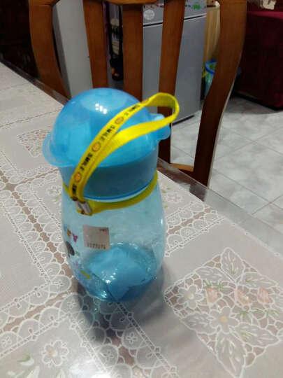 迪士尼(Disney)儿童水杯直饮水壶嘟嘟Q杯防漏幼儿水瓶婴儿杯子宝宝喝水杯5423蓝色米奇彩色 晒单图