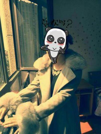 伊架子 毛呢大衣女中长款2016新款韩版呢子外套修身显瘦气质大毛领毛呢外套女 浅灰色 XXXL 晒单图