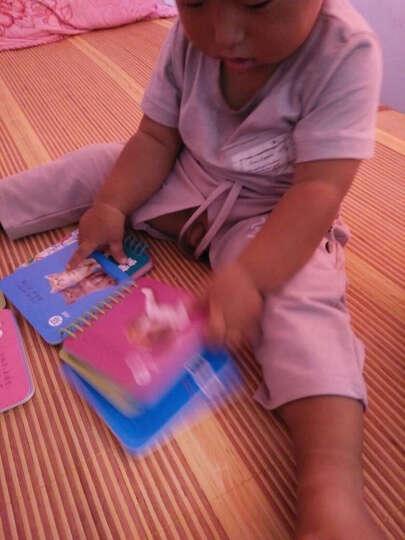 幼儿童撕不烂看图识字卡片全套8册3-6岁宝宝看图识字启蒙卡 数字卡片 汉语拼音卡片儿歌卡片 晒单图