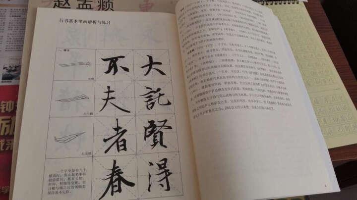 行书:王羲之《兰亭序》颜真卿《祭侄文稿》苏轼《黄州寒食诗帖》赵孟頫《洛神赋》 晒单图