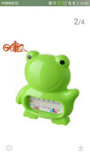 可爱小青蛙动图
