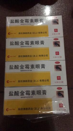 2.5g】 盐酸金霉素眼膏 结膜炎沙眼金霉素软膏药膏眼药眼皮肿眼睛消肿膏 晒单图