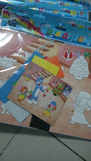 那些花儿(TFLOWER) 那些花儿EVA手工制作立体贴画儿童DIY创意粘贴画系列玩具 W韩版系列16张K3301 晒单图