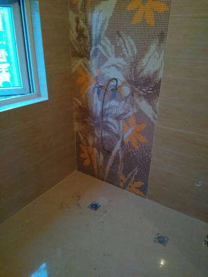 巴斯塔 定制做马赛克背景墙 眼神马赛克拼图拼花  客厅玄关浴室过道瓷砖 PT051-100 PT004(0.1平方米) 晒单图
