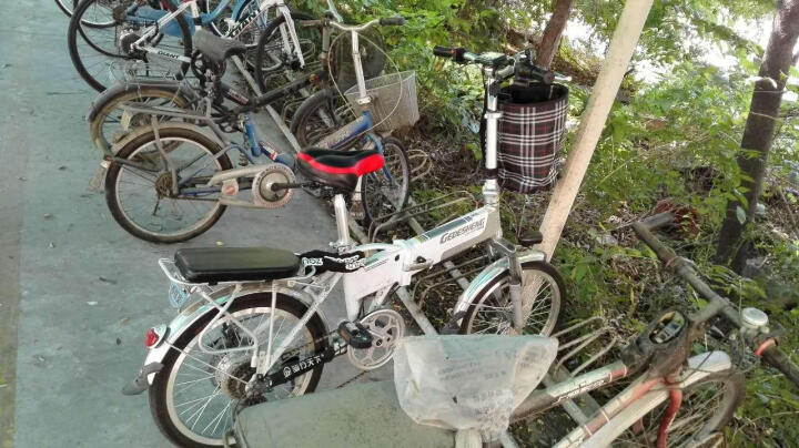 正步(ZB) 新国标电动自行车男女士成人代步迷你折叠电瓶车锂电池小型代驾助力电单车 20寸至尊版36V/白色 晒单图