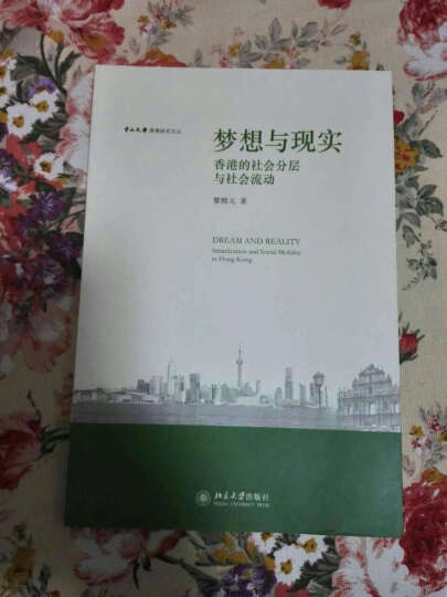 梦想与现实:香港的社会分层与社会流动 晒单图