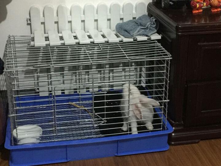 纽安吉兔笼铁质塑料兔笼子龙猫用品笼子兔宠物笼子 兔子笼子兔子笼鸽子笼子围栏 笼子配件 抽屉式三层龙猫笼底盘 晒单图