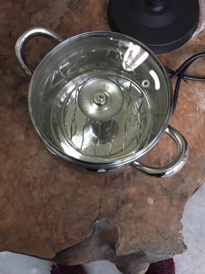 立客(LIKE) 电火锅电炖锅电热锅 多功能电煮锅煮面锅LK-Z108 晒单图