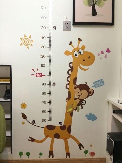 可移除儿童房身高尺墙贴宝宝卧室墙壁贴纸卡通动物身高贴测量身高墙贴纸 九九乘法表 大 晒单图