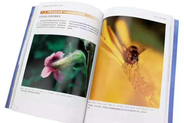 蜂鸟摄影学院新手学摄影(风光篇) 晒单图