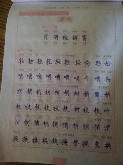 司马彦字帖·中性笔字帖:写字课课练·二年级下册(北师大版) 晒单图