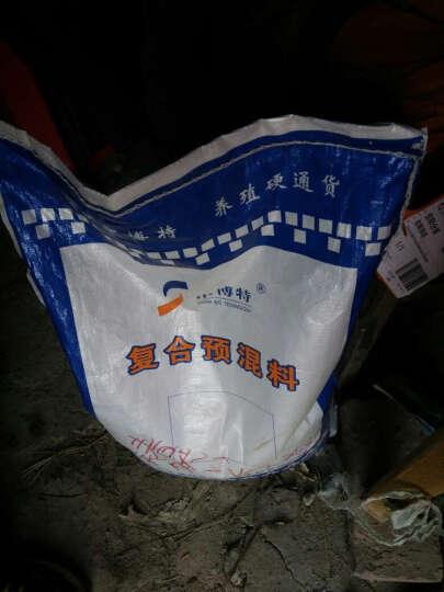 中博特生物 中博特 4%肉羊预混料 育肥羊复合预混料 肉羊育肥专用饲料添加剂 20kg 20kg整袋 晒单图
