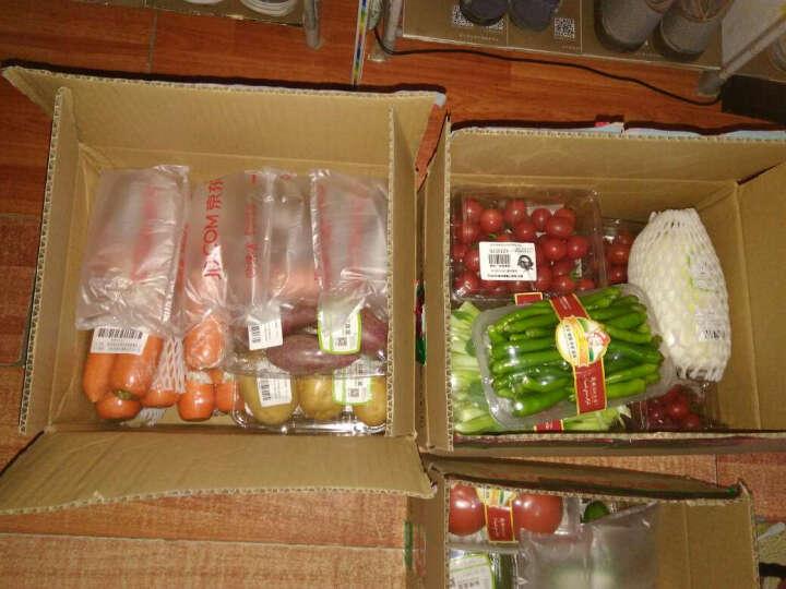 孙桥 本地刺黄瓜 约350g 新鲜蔬菜 晒单图