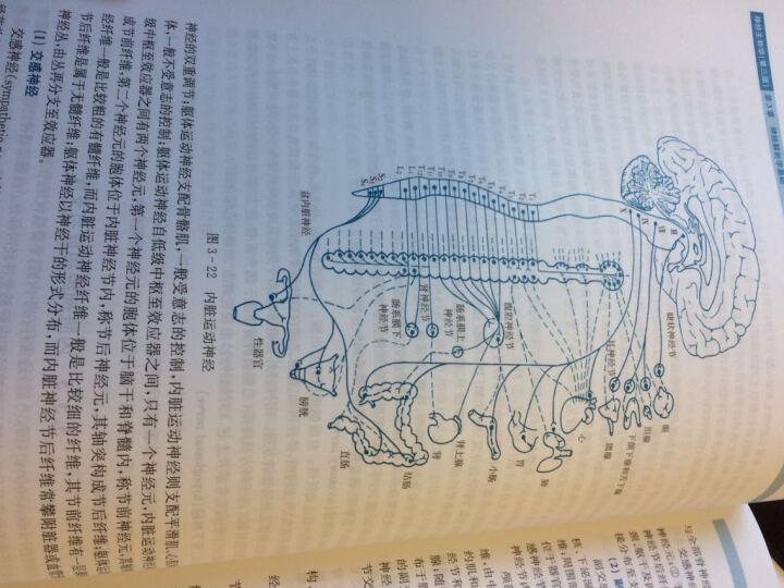 神经生物学(第三版) 晒单图