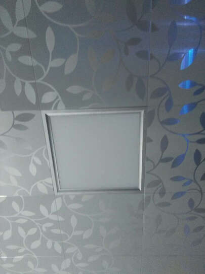 和家喜 LED集成吊顶灯嵌入式平板灯厨房灯铝扣板厨卫灯面板灯8W300*300铝扣面板灯具 真爱永恒  20/300*600 正白光 晒单图