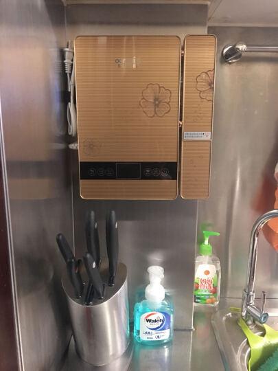 欧麦斯(OUMAISI) X5洗菜机家用全自动果蔬净水果蔬菜农残消毒清洗原生解毒机 晒单图