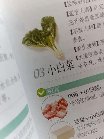 食物相宜相克速查手册(汉竹) 晒单图