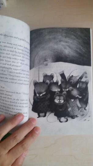 小学初中英语系列企鹅课表经典-柳林风声(资料练习题) 晒单图