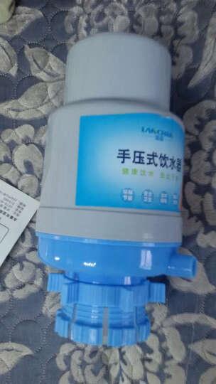 【京东快递】手压式桶装水压水器饮水机 纯净水抽水器 矿泉水吸水抽水泵 灰蓝优质加厚压水器 晒单图