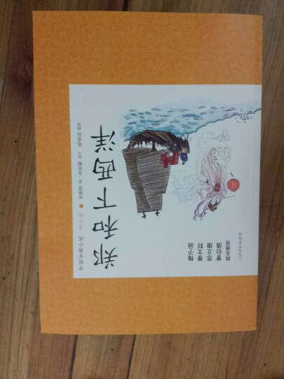 中国古典小说青少版:郑和下西洋 晒单图