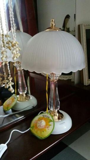 欧式台灯卧室床头灯水晶led节能台灯时尚婚庆桌