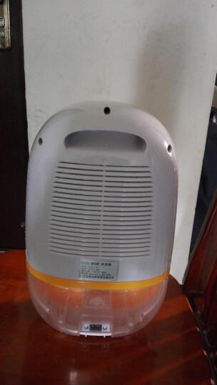 赛特斯(cetus) 【一年包换】1303 家用电子除湿机抽湿机除湿器吸湿器去湿机抽湿器 晒单图