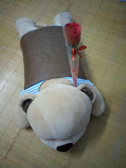 情人节女朋友生日礼物女生老婆闺蜜送给女友女孩子男朋友爱人儿童的创意实用小礼品蓝牙音乐抱枕 有线 小号棕蓝(60厘米) 特价款 晒单图