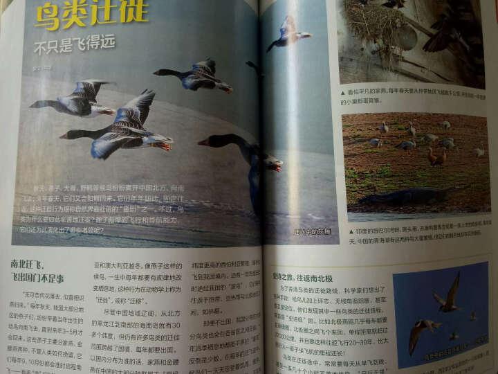 博物杂志2016年9月总第153期 水母 水做的精灵 中国国家地理少年版科普期刊 晒单图