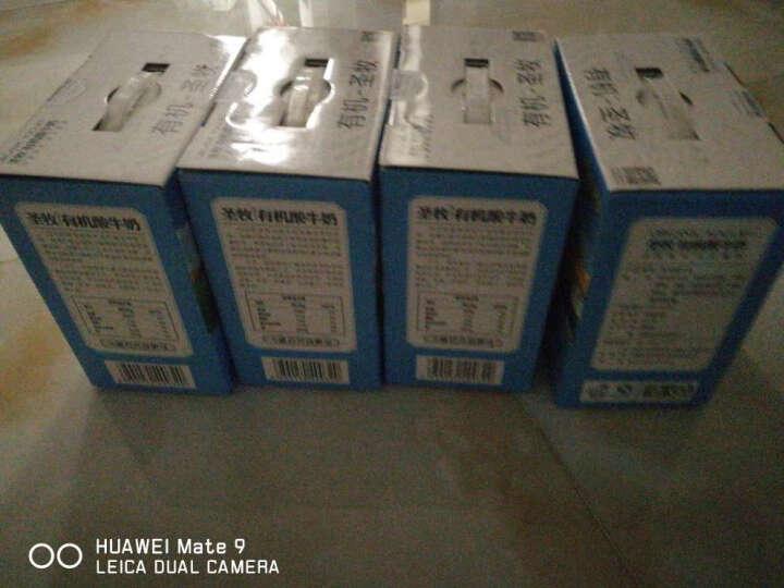 圣牧 有机酸奶 205g*12盒*2箱 巴氏杀菌酸牛奶整箱 晒单图