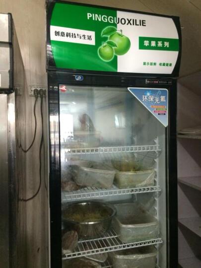 乐创(lecon) 啤酒展示柜冷藏立式冰柜商用冰箱饮料饮品保鲜单门双门三门冷柜水果鲜花点菜 红黑色双门 风冷 晒单图