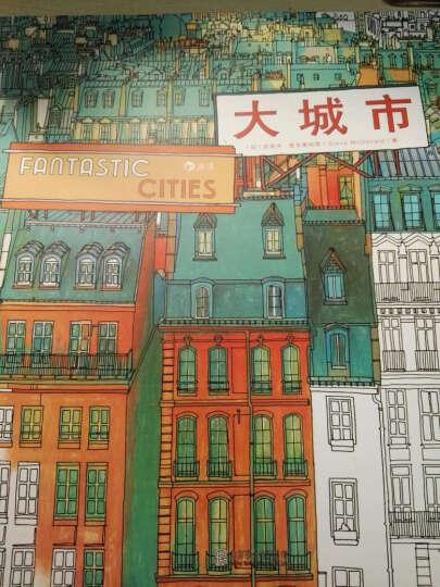 秘密花园涂绘学院丛书:大城市 晒单图