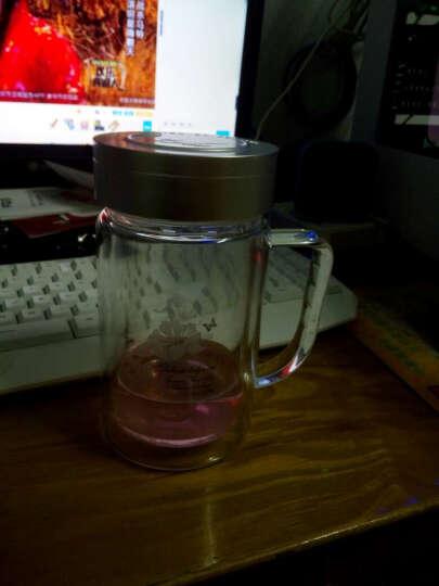 富光 健牌系列玻璃杯 大容量男女玻璃茶杯 商务办公便携带滤网双层玻璃水杯子 500ml 晒单图