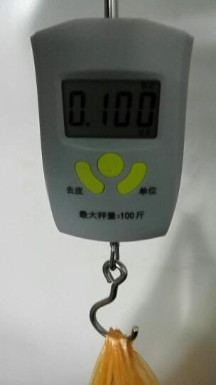 凯丰 【品牌直营】电子地磅秤1-3吨/5T10T 小型电子地磅称重平台秤小秤畜牧磅秤 1.5米*2米 3吨+围栏 晒单图