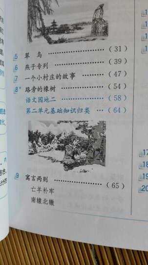 小学教材全解 三年级语文下 人教版 2017春 晒单图