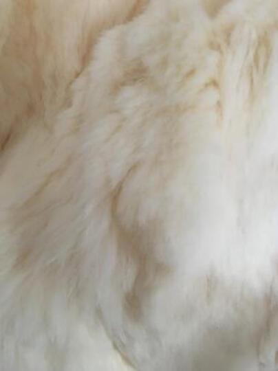 欧偲麦 皮草女外套新款时尚秋冬季獭兔毛中长款风衣大衣 1210 紫色 XL 晒单图