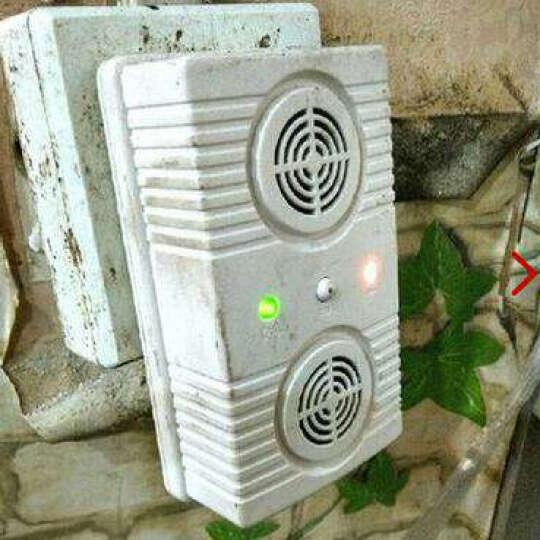 大功率大面积台湾进口驱鼠器家用超声波驱蚊器蟑螂老鼠干扰器电子猫灭鼠捕鼠驱虫器送粘鼠板 驱鼠器300平方 晒单图