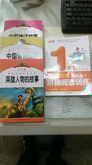 小学语文新课标阅读全4册(彩图注音)中国神话、中国寓言、英雄人物英雄人物的故事 晒单图